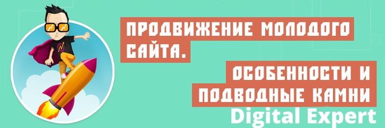 Молодой сайт и его продвижение в ТОП 10 Яндекса и Гугл