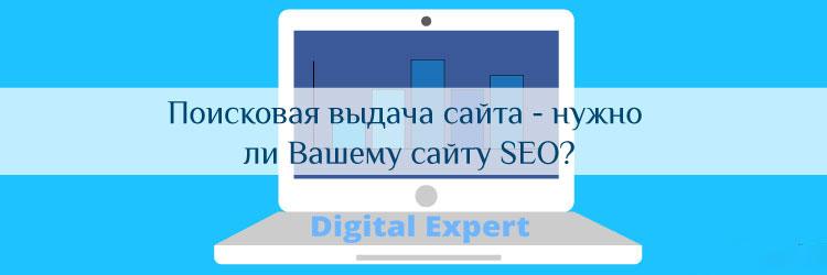 Поисковая выдача сайта - нужно ли Вашему сайту SEO?